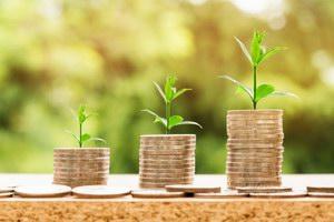 Plany kapitałowe - roślina i złotówki